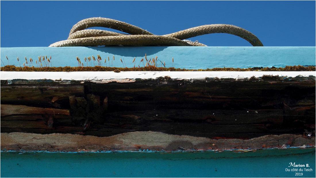 BLOG-P4071201-coque et cordages pinasse Tiburon