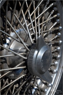 BLOG-DSC_46552-Triumph TR5