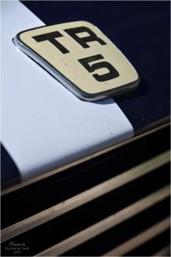 BLOG-DSC_46559-Triumph TR5