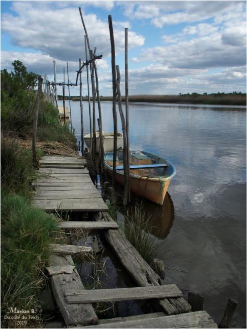 BLOG-P5051441-Leyre port des Tuiles Biganos