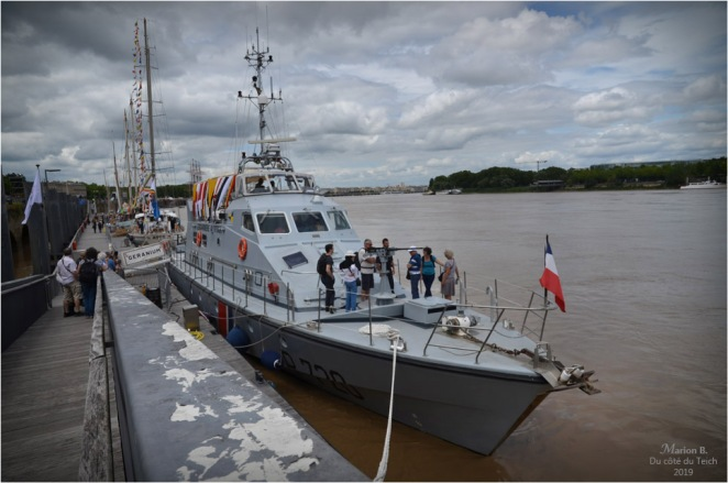 BLOG-DSC_46846-Géranium Bordeaux fête le fleuve 2019