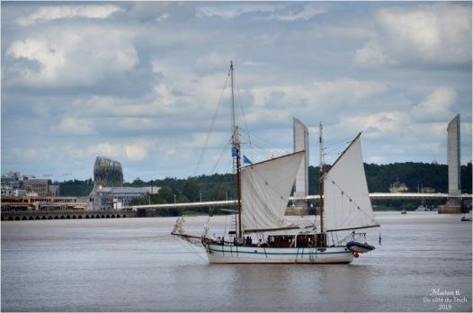 BLOG-DSC_46889-2-Arawak cité du vin et pont Chaban Bordeaux fête le fleuve 2019