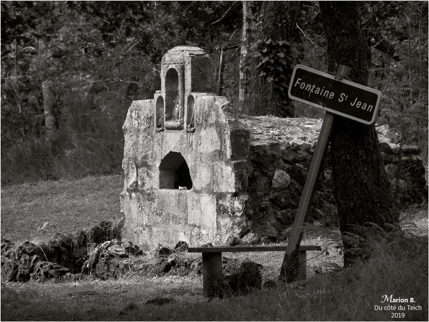 blog-p8081980-2-fontaine-st-jean-lamothe-le-teich-nb.jpg
