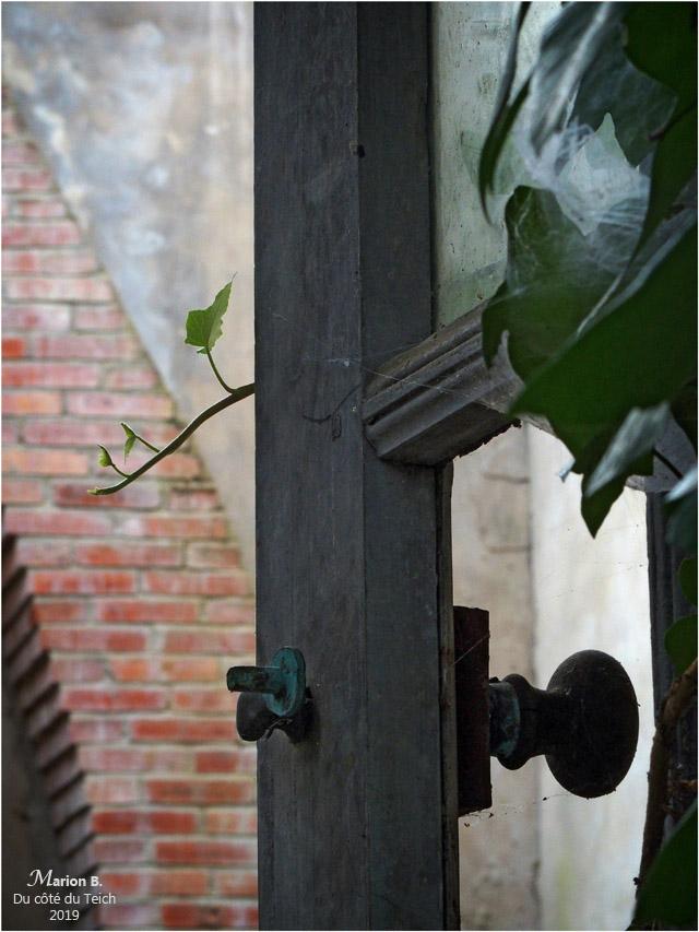 BLOG-P8262063-porte et mur briques