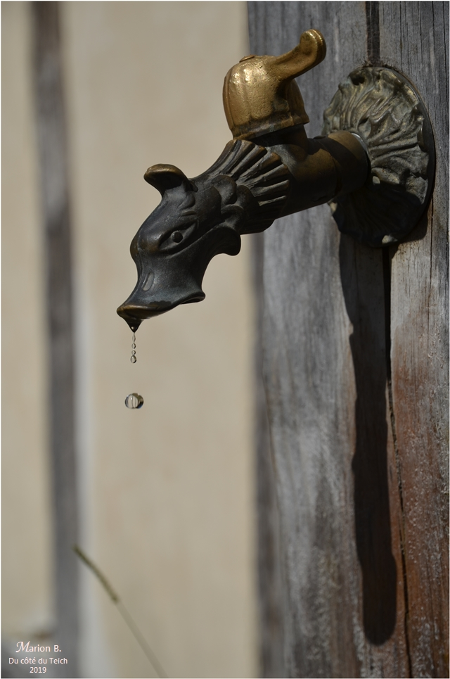 BLOG-DSC_47499-goutte robinet