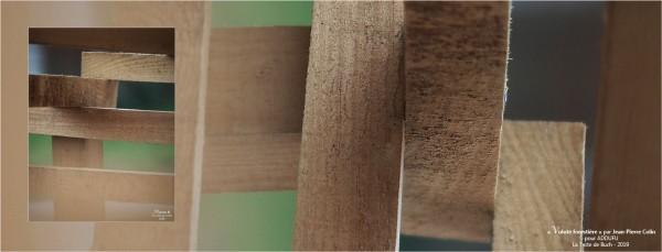 BLOG-PA022703-2-bannière Volute forestière JP Colin la Teste