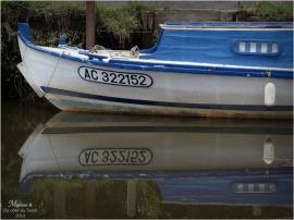BLOG-PA233137-pinasse petit port Biganos