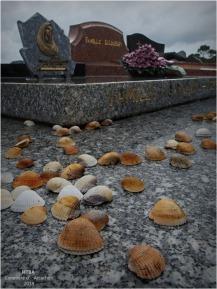 HTBA-PA193080-cimetière Arcachon