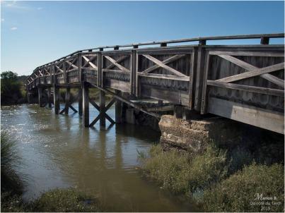 BLOG-P9112373-pont réserve naturelle Arès