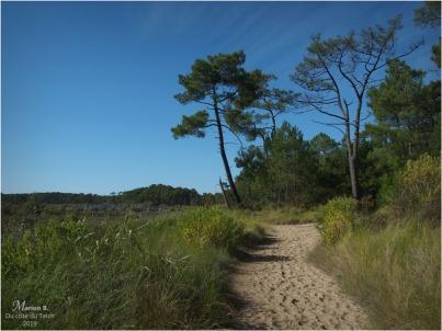 BLOG-P9112375-réserve naturelle Arès