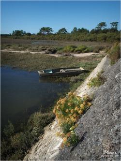 BLOG-P9112391-digue port et réserve naturelle Arès