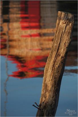 BLOG-PB103438-piquet et reflet