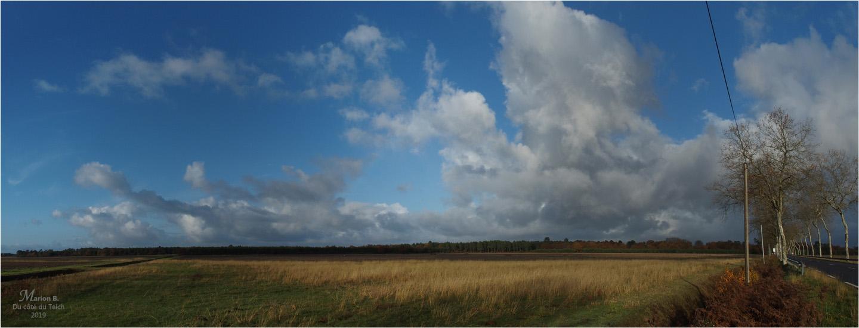 BLOG-PB293796-97-champ forêt et route Landes
