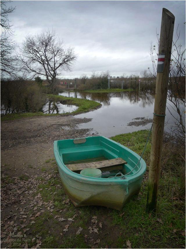 BLOG-P1000029-inondations plaines le Teich