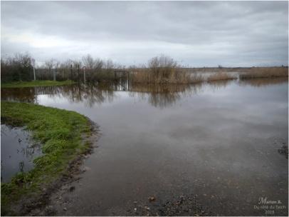 BLOG-P1000031-inondations plaines le Teich
