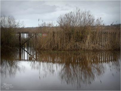 BLOG-P1000034-inondations plaines le Teich