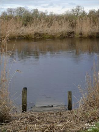 BLOG-P1000065-Eyre le Teich