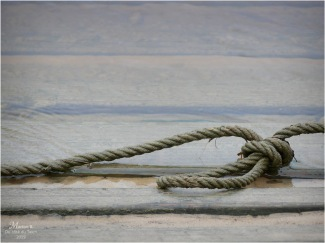 BLOG-P1000066-ponton inondé Eyre le Teich
