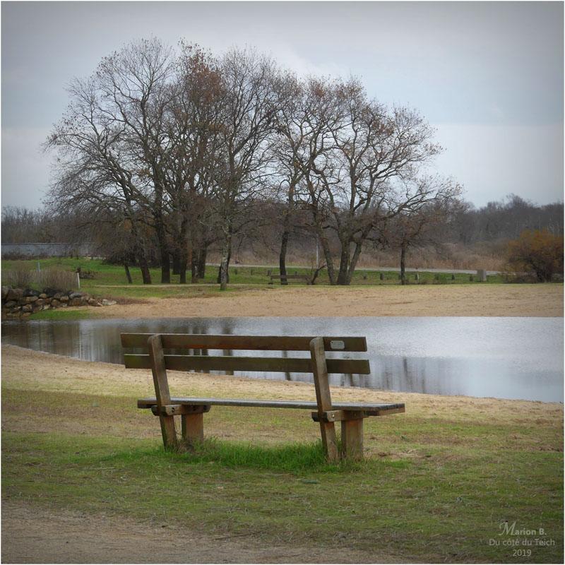 BLOG-P1000070-banc étang le Teich