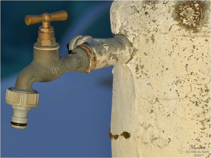 BLOG-P1000127-robinet port