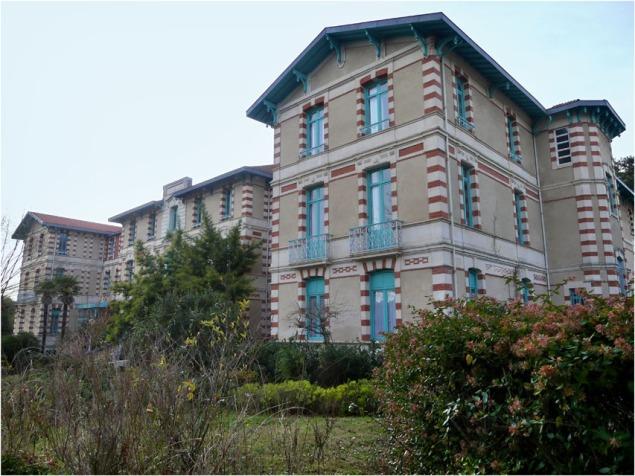 BLOG-P1000527-hôtel de la forêt ville d'hiver