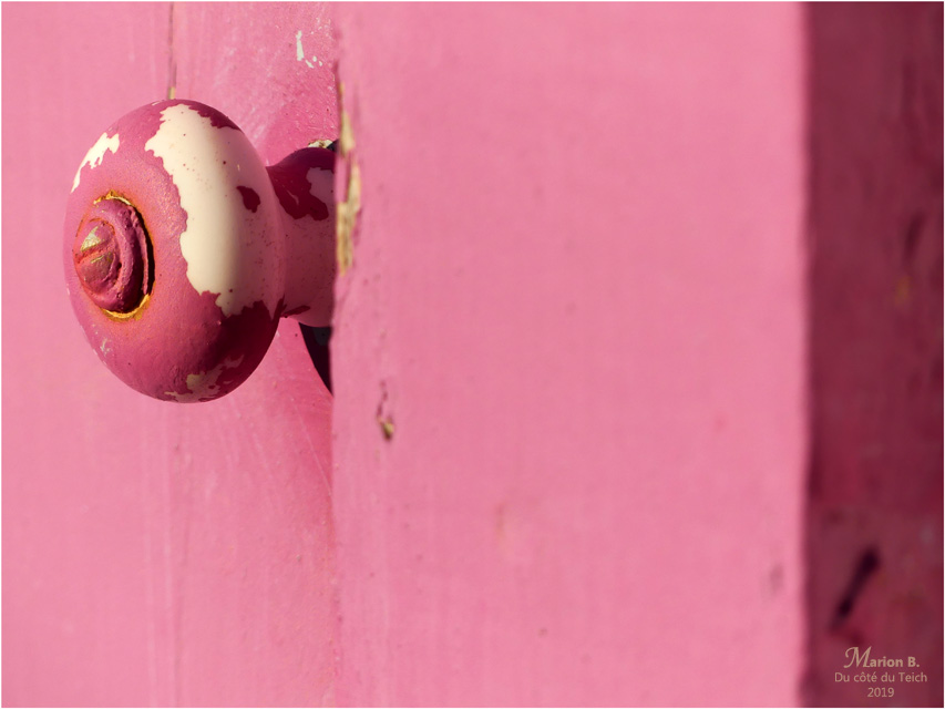 BLOG-P1000576-porte rose