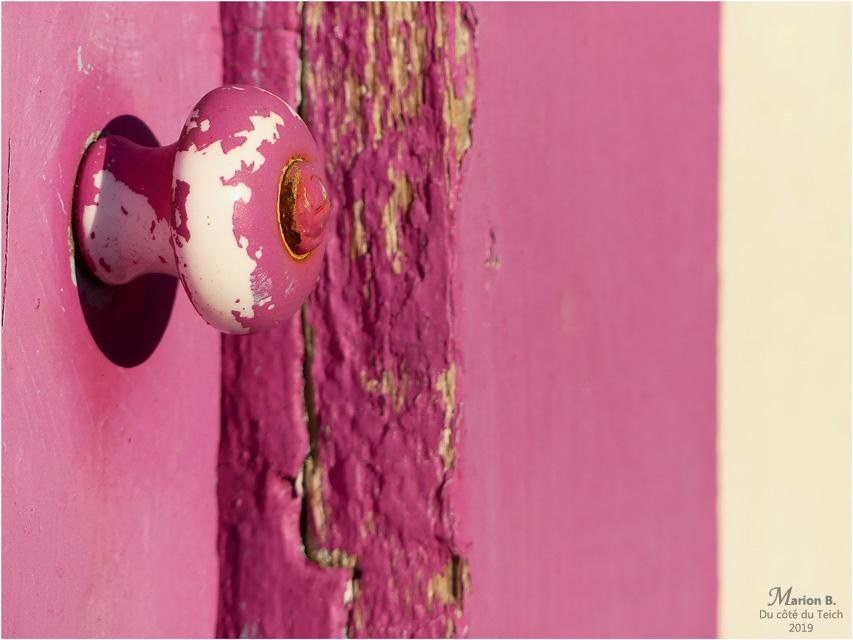 BLOG-P1000577-1-porte rose