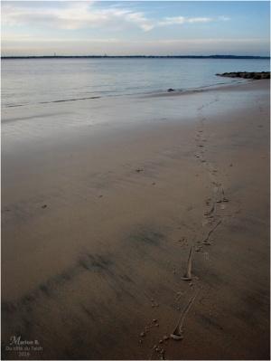 BLOG-PC043883-empreintes et rivage plage