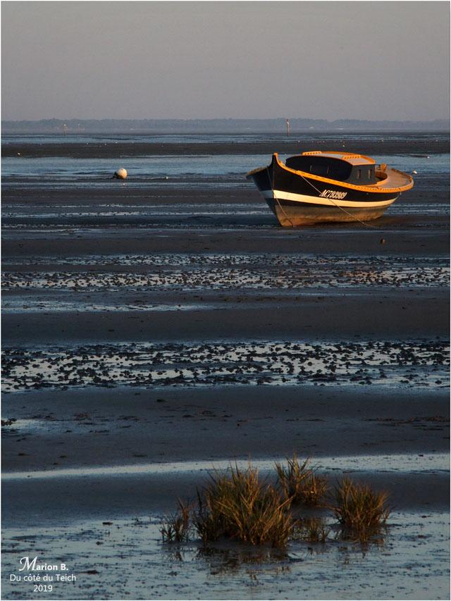 BLOG-PC053999-pinasse Claouey marée basse