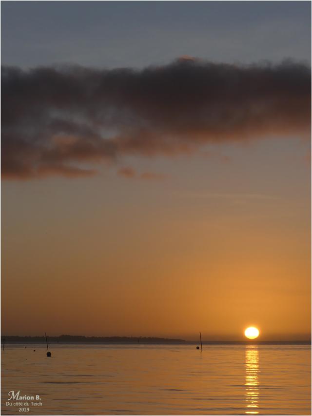 BLOG-P1000380-coucher de soleil Taussat