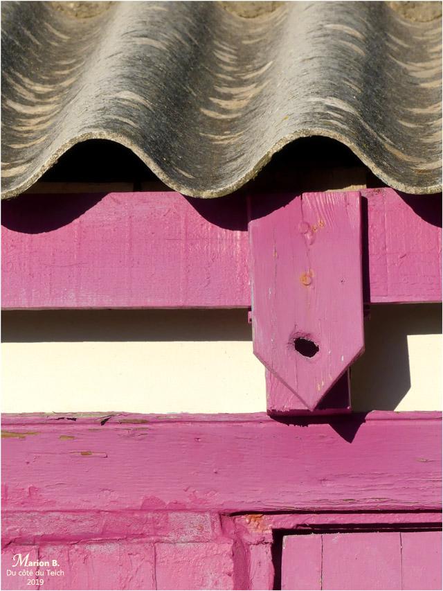 BLOG-P1000565-cabane porte rose