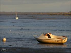 BLOG-P1000795-rivages Lapin Blanc soir