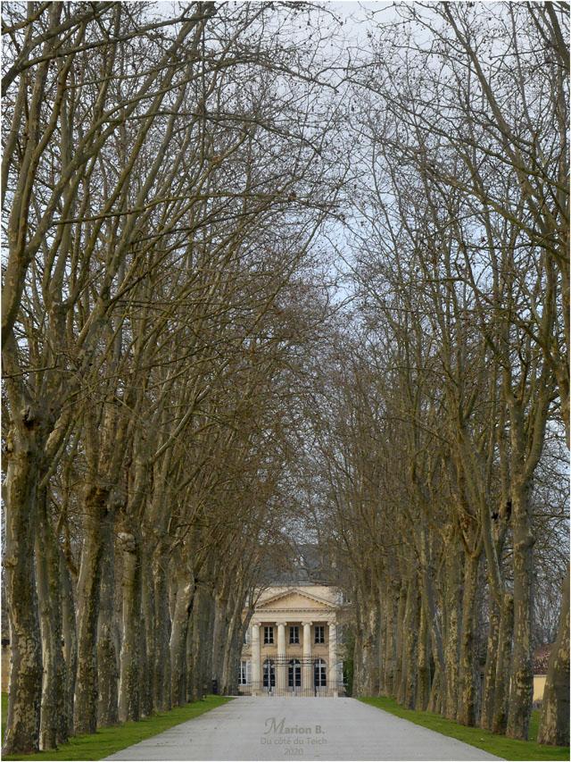 BLOG-P1010191-château Margaux hiver