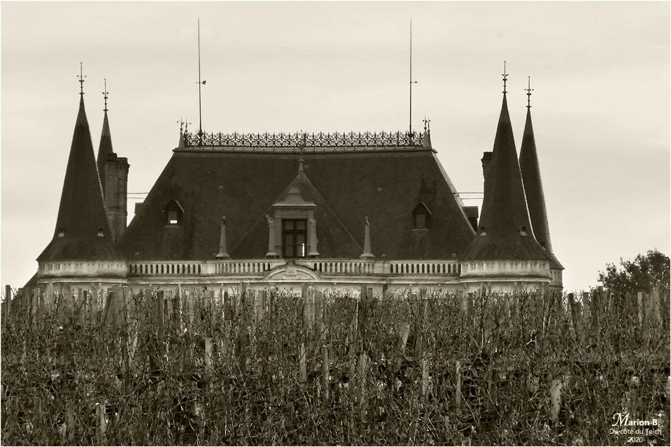 BLOG-P1010194-Château Palmer vu depuis Margaux NB