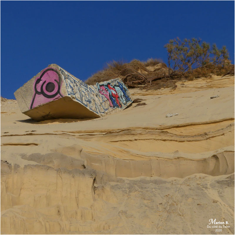 BLOG-P1010214-2-blockhaus dune Pilat