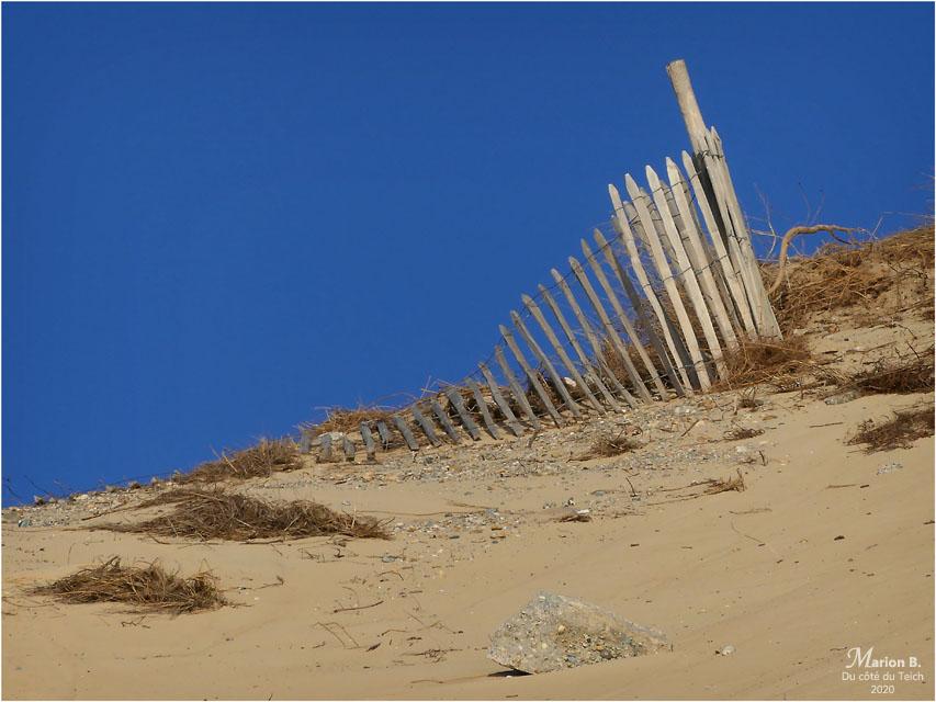 BLOG-P1010218-ganivelles dune du Pilat