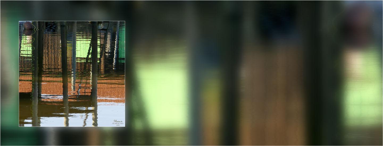 BLOG-P1010018-bannière reflets