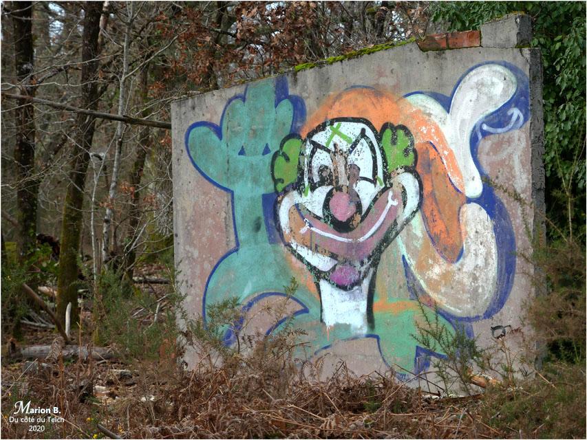 BLOG-P1010529-tag clown forêt