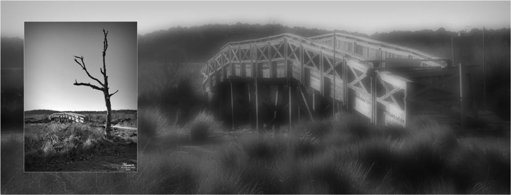 BLOG-P1010701-709 flou-bannière pont réserve naturelle Arès N&B