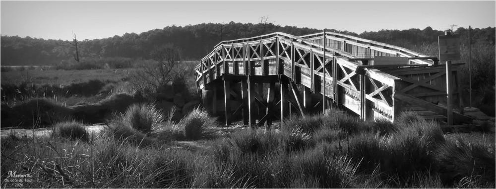 BLOG-P1010709-bannière pont réserve naturelle Arès N&B