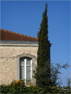 BLOG-P1010994-villa Arcachon