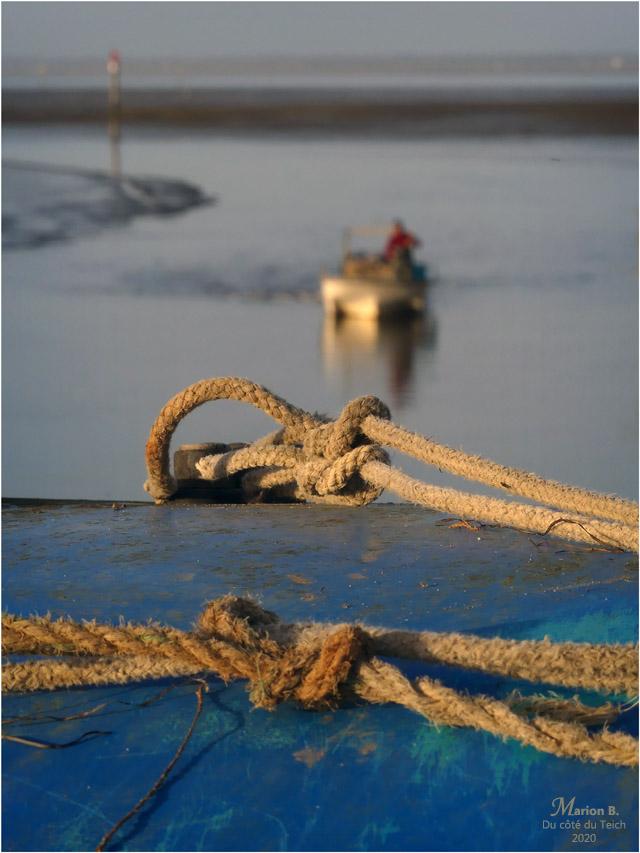 BLOG-P1020094-cordages et retour au port