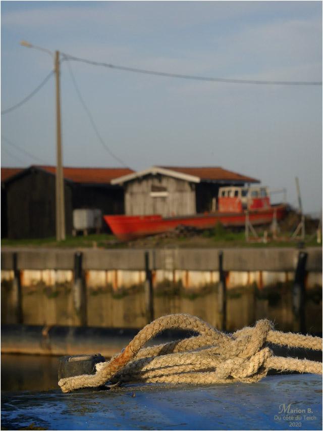 BLOG-P1020099-cordages et quai