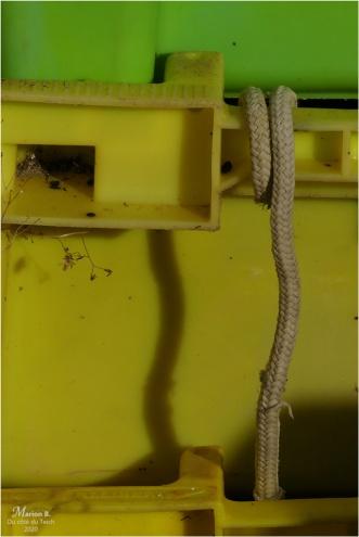 BLOG-P1020280-casiers et cordage