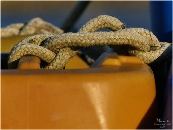 BLOG-P1020312-bidon et cordage