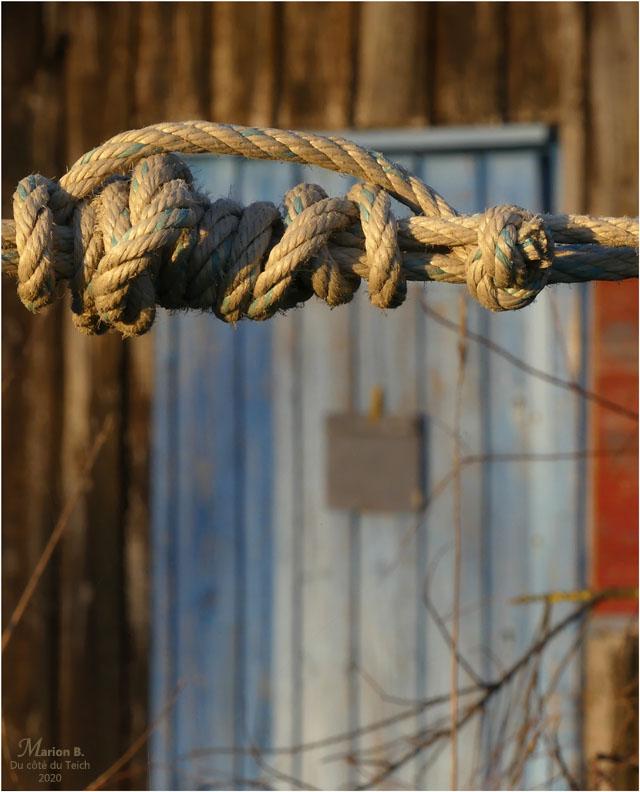 BLOG-P1020347-corde et porte cabane