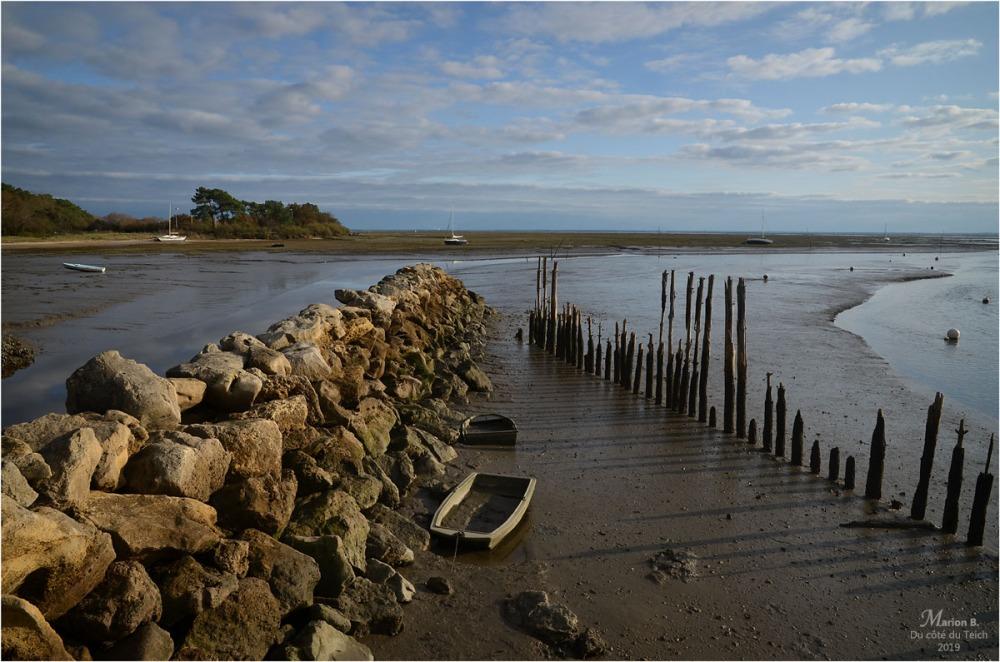 BLOG-DSC_48027-rivages Arès marée basse