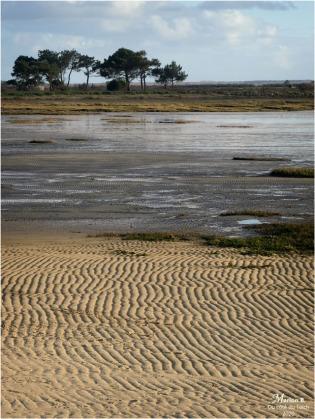 BLOG-P1020207-plage Suzette Cassy