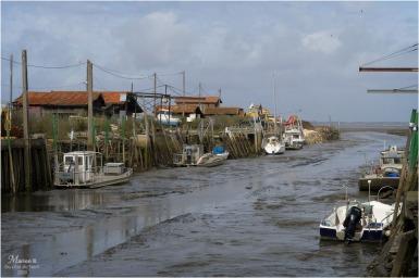 BLOG-P1020556-quais Meyran marée basse