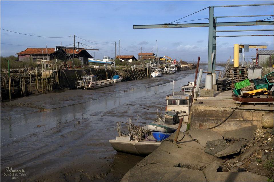 BLOG-P1020603-quais Meyran marée basse